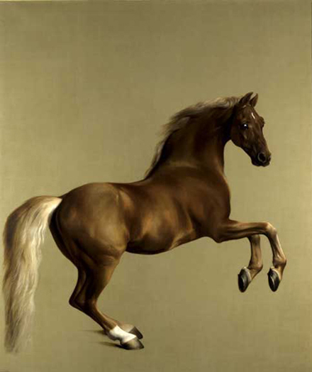 A stallion, light gleaming on his body, standing on back legs