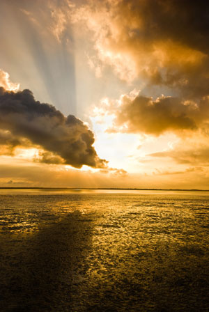 Golden sea and clouds