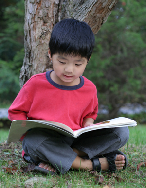 Chinese boy reading book under tree