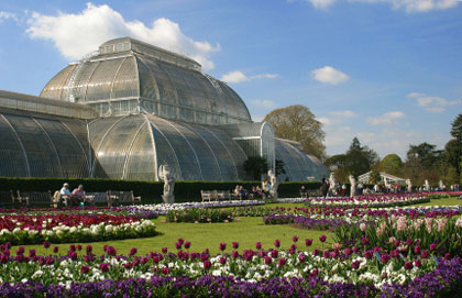 Superbe The Royal Botanic Gardens, Kew. Kew, Palm House