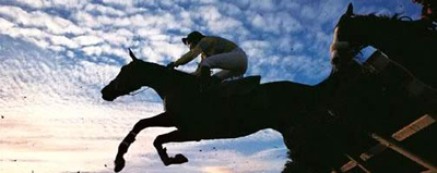 Horses and riders flying over fences at Cheltenham