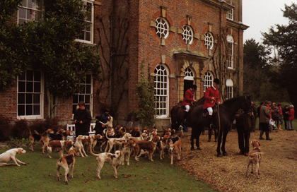 Horses, riders and hounds gather before hunt