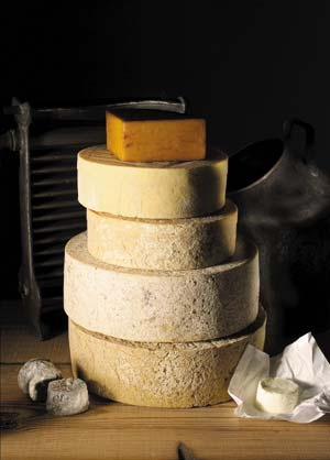 albion_cheese_double_gloucester.jpg