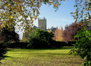 albion_wells_cathedral_300w.jpg
